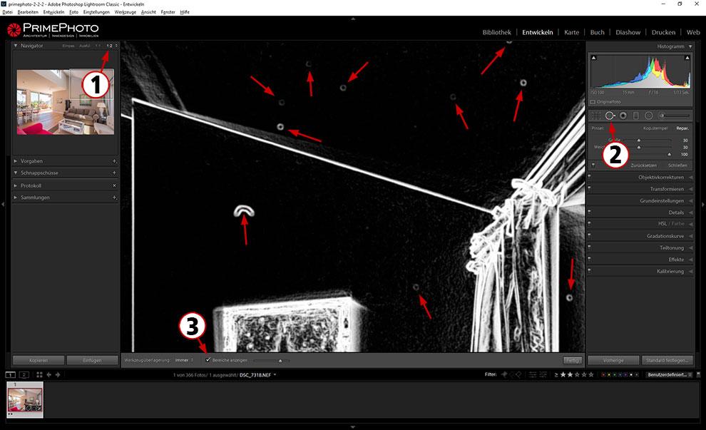 In Adobe Lightroom wird sichtbar, wenn der Kamerasensor schmutzig ist.